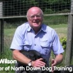 Client Showcase – North Down Dog Training