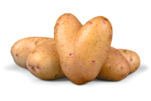 potatos02